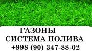 Газоны,  озеленение,  спорт трава,  парковый газон,  Canada Green. Альпийс